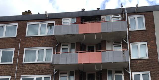 Renovatie 216 woningen Reimerswaalbuurt
